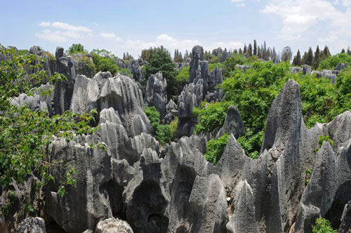 Foto-Stone-Forest-National-Park-China